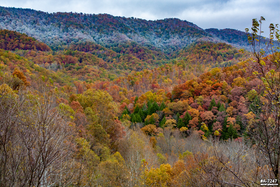 Fayette County snow line and fall colors