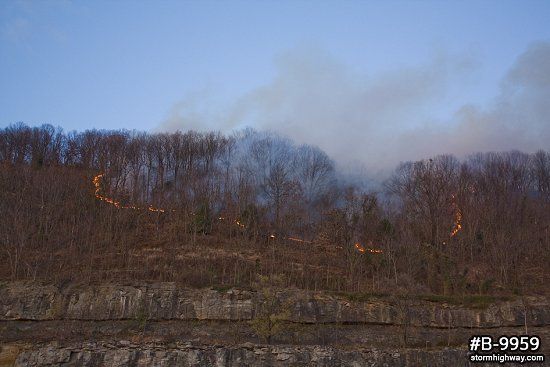 Daytime forest fire in WV